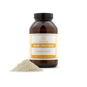 Raw Organic Hemp Protein Powder | Endoca CBD
