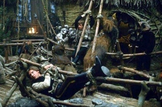 Image result for ewok captives