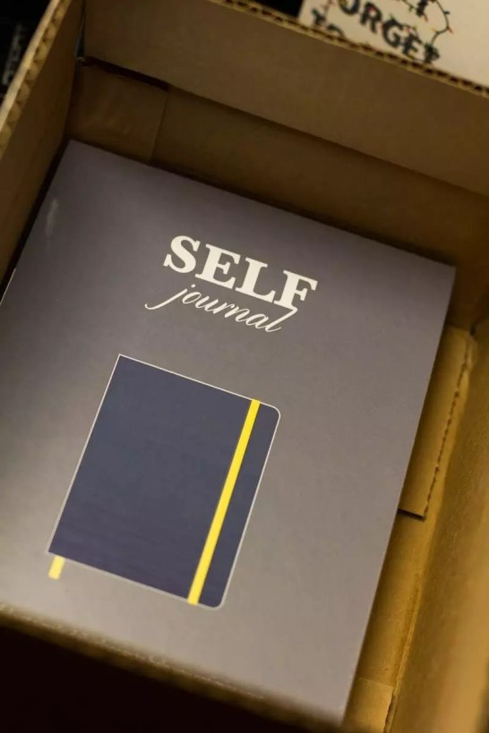 The box inside the box - Best Self Journal Unboxing