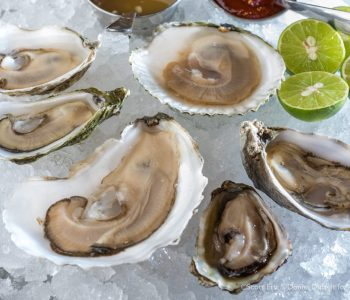 A recent selection of oysters from simjang's raw bar on Shrewsbury Street in Worcester, MA (Erb Photography for Mass Foodies)