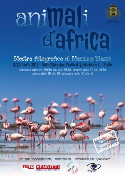 mostra animali d'africa