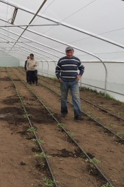 Members of an Oxfam-sponsored farmers' cooperative in Haghtanak operate a greenhouse where they plant crop varieties and practice techniques to withstand climate change