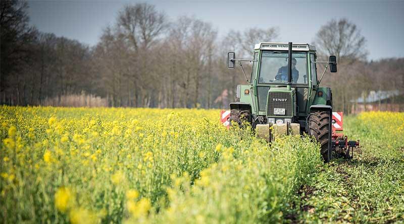 Bagaimana Kecerdasan Buatan Mengubah Industri Pertanian