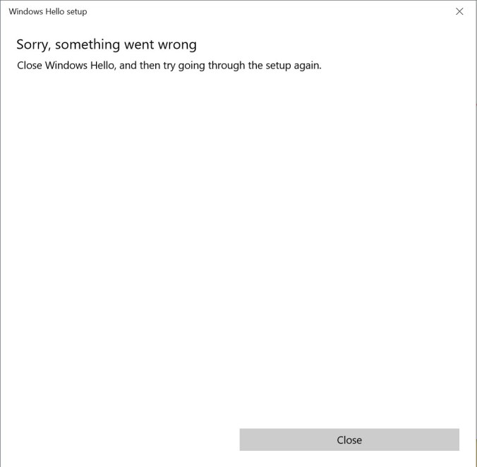 Windows Hello Something went wrong