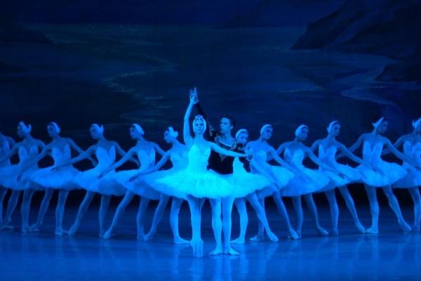 Le Lac des Cygnes – Les ballets racontés