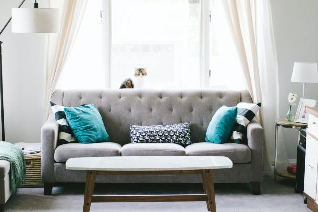 Room with a grey couch and blue and black pillows with a cat sitting near a window.