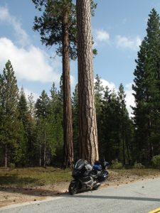 Sequoia Park & GTL May 5-14