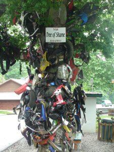 Tree of Shame Deals Gap