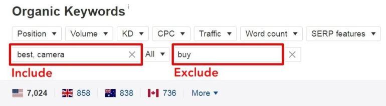 Organic Keywords - Include Exclude