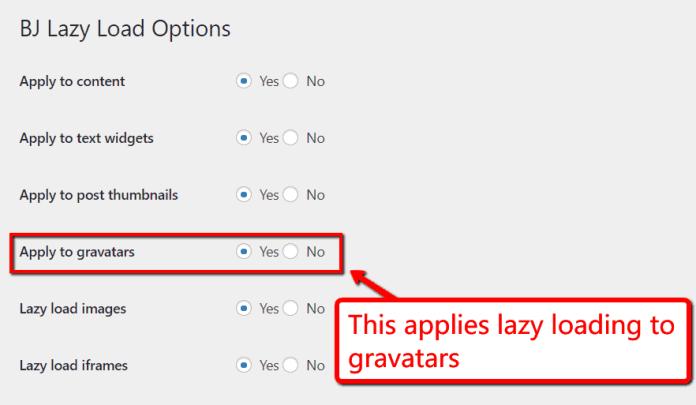 BJ lazy load options