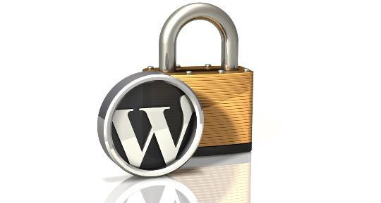 secure wordpress website