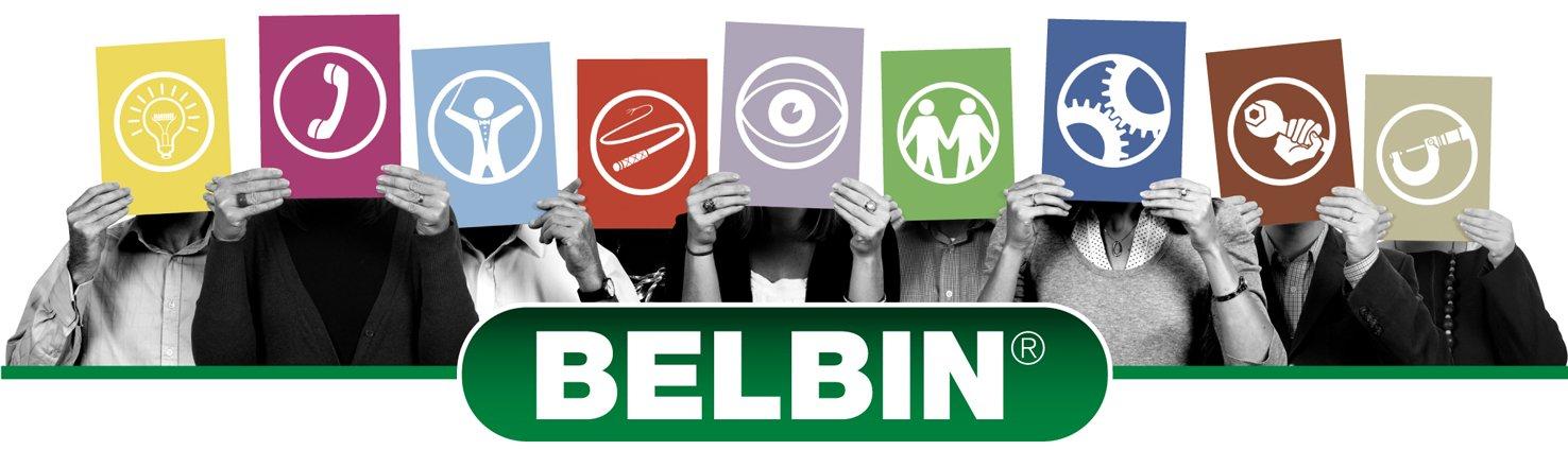 Belbin team roles 360 - Andi Roberts