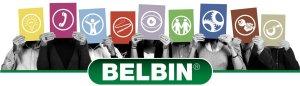 Belbin Team Roles 360 - Image Source Belbin UK