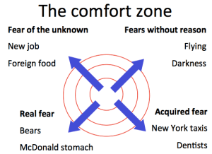Comfort Zone - Sources of fear