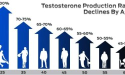 The Importance of Testosterone to Male Health