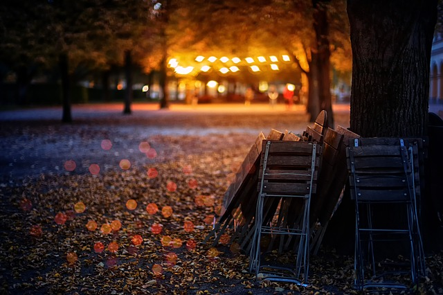Autumn Leaf Clearance - Leaves Cleared For The Winter Events