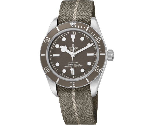 Tudor Black Bay Fifty-Eight 925 (Reference 79010SG)