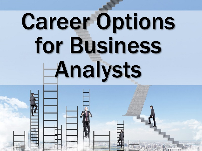 MBA178: Career Options for BAs
