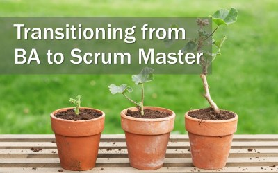 MBA187: Transitioning to a Scrum Master Role