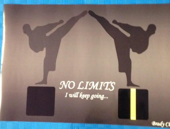 brady black belt poster cobourg tae kwon do