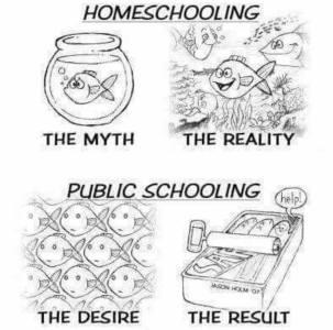 hs-myth-reality