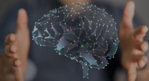 Programa Avanzado de Investigación en Neuromarketing