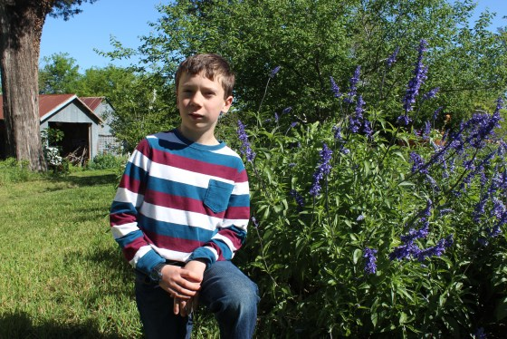 Eli has several varieties of salvia that he propagates each year. This year he added pineapple sage to his list of offerings