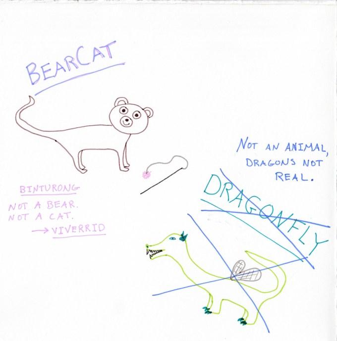 List_Bearcat