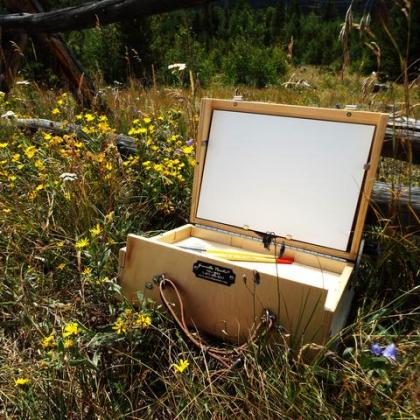 What S The Best Plein Air Easel For Me Master Oil Painting