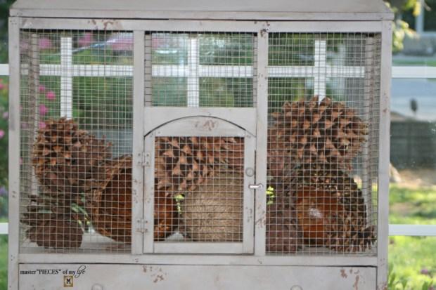Thru the seasons - ornamental birdcage 7