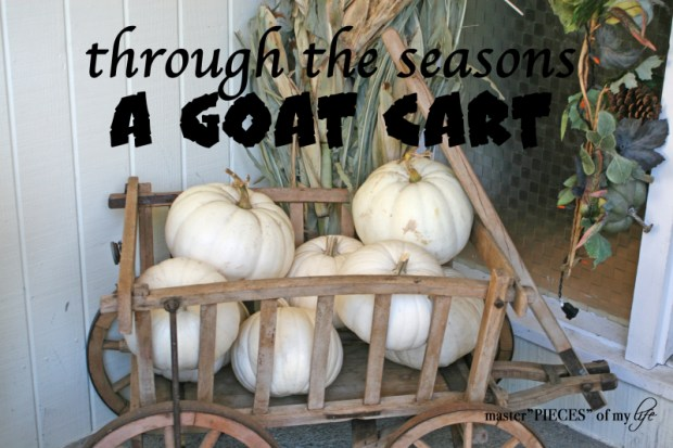 Through the seasons - a goat cart