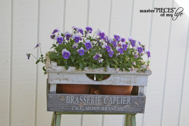 Container gardening 2020 2