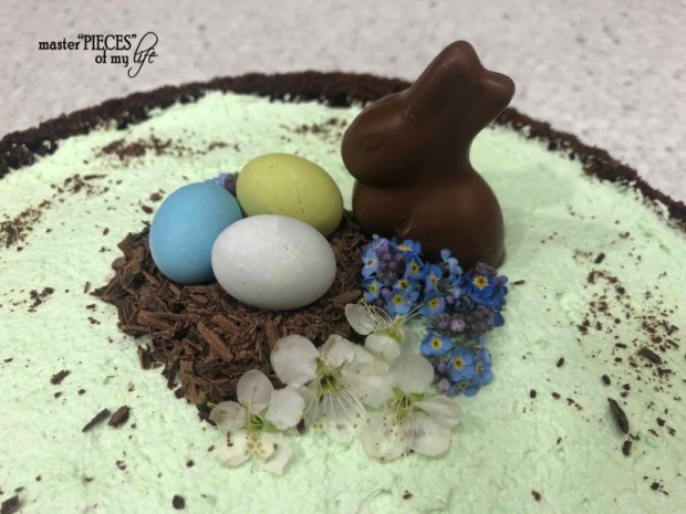 Chocolate pistachio cake6