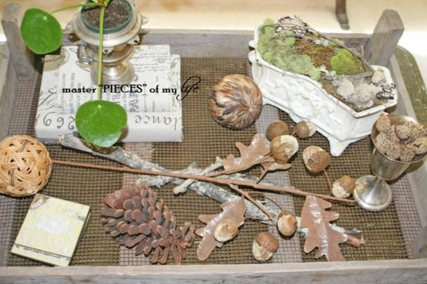 Moss planter2