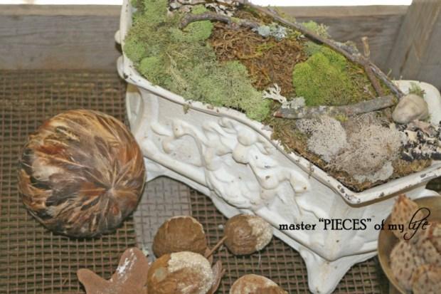 Moss planter6