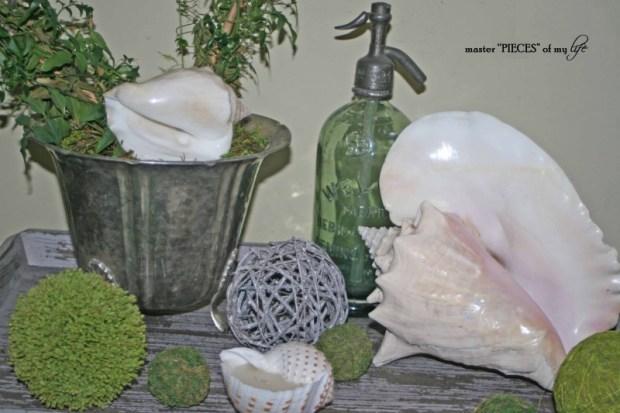 Seashell summertime decor 1
