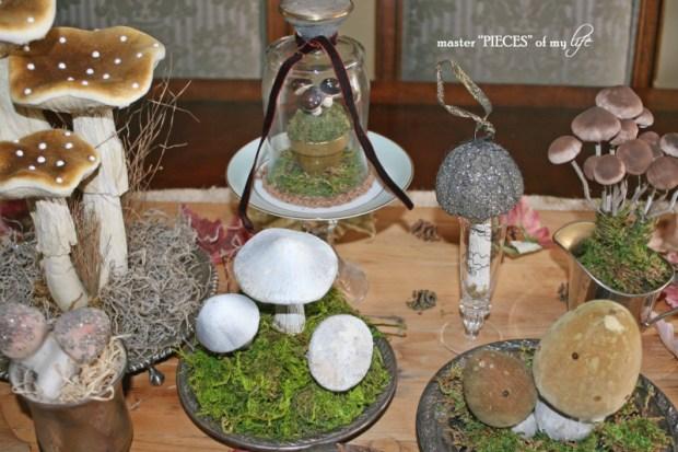 Mushrooms6