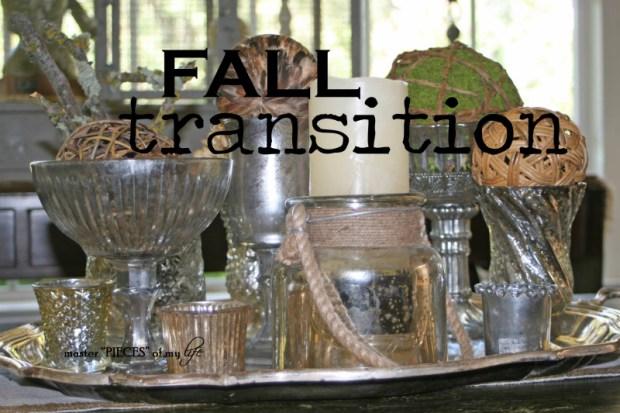 Fall transition1