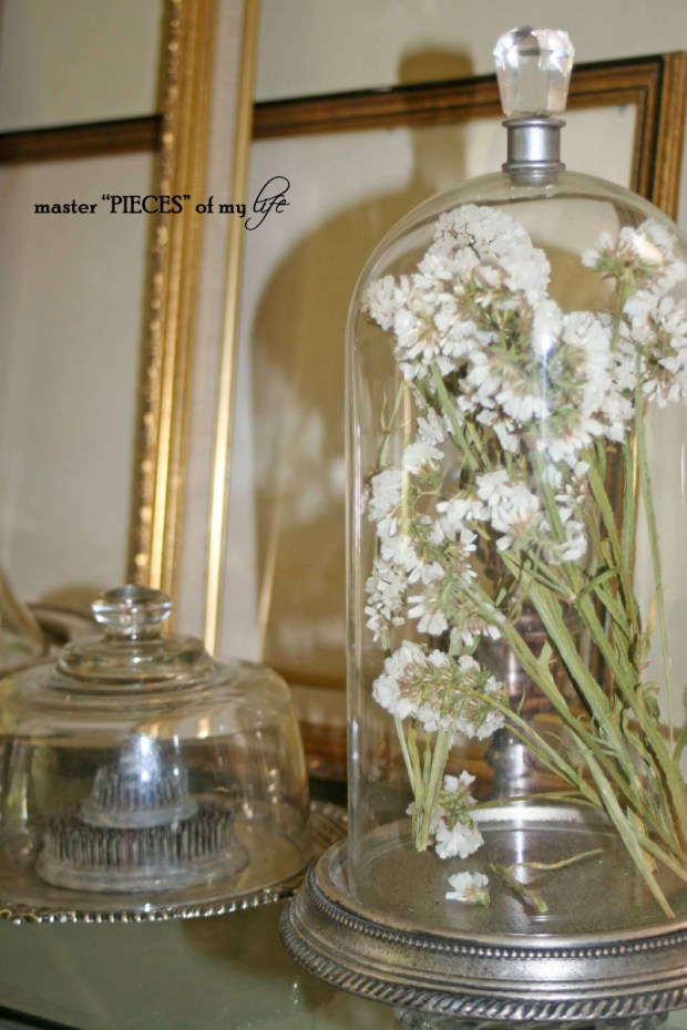 Cloches & dried flowers15