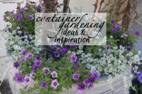 Container gardening ideas & inspo1