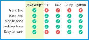 programming for
