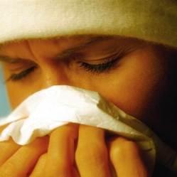 1c4262483-g-tech-110505-allergy-5p.nbcnews-ux-600-480