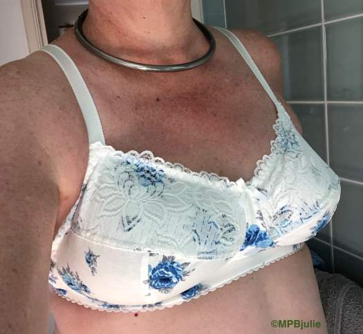 Me wearing a new white bra with blue roses. I've cropped off my head, but you can see my collar.