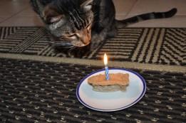 Happy Birthday to Me Happy Birthday to Me