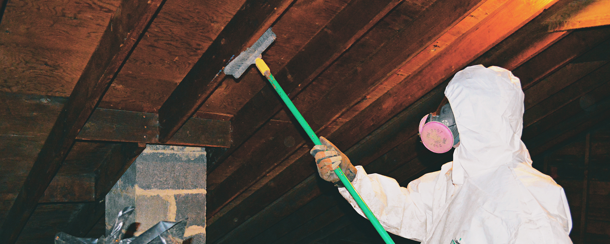 Attic Mold Removal NJ Professional South Jersey Mold Removal Services