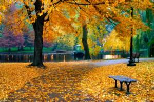 boston-park-in-fall