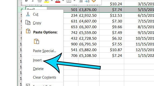 Microsoft Excel how to insert a row