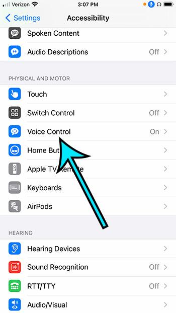 select Voice Control