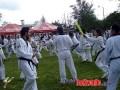 2010-05-31_(a)x_masTaekwondo_Seminario-Capacitacion-Taekwondo-Costa-Rica_600_02