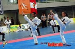 2010-07-04_(9894)_masTaekwondo_Open-Pumse-Oskar-Posada_600_02